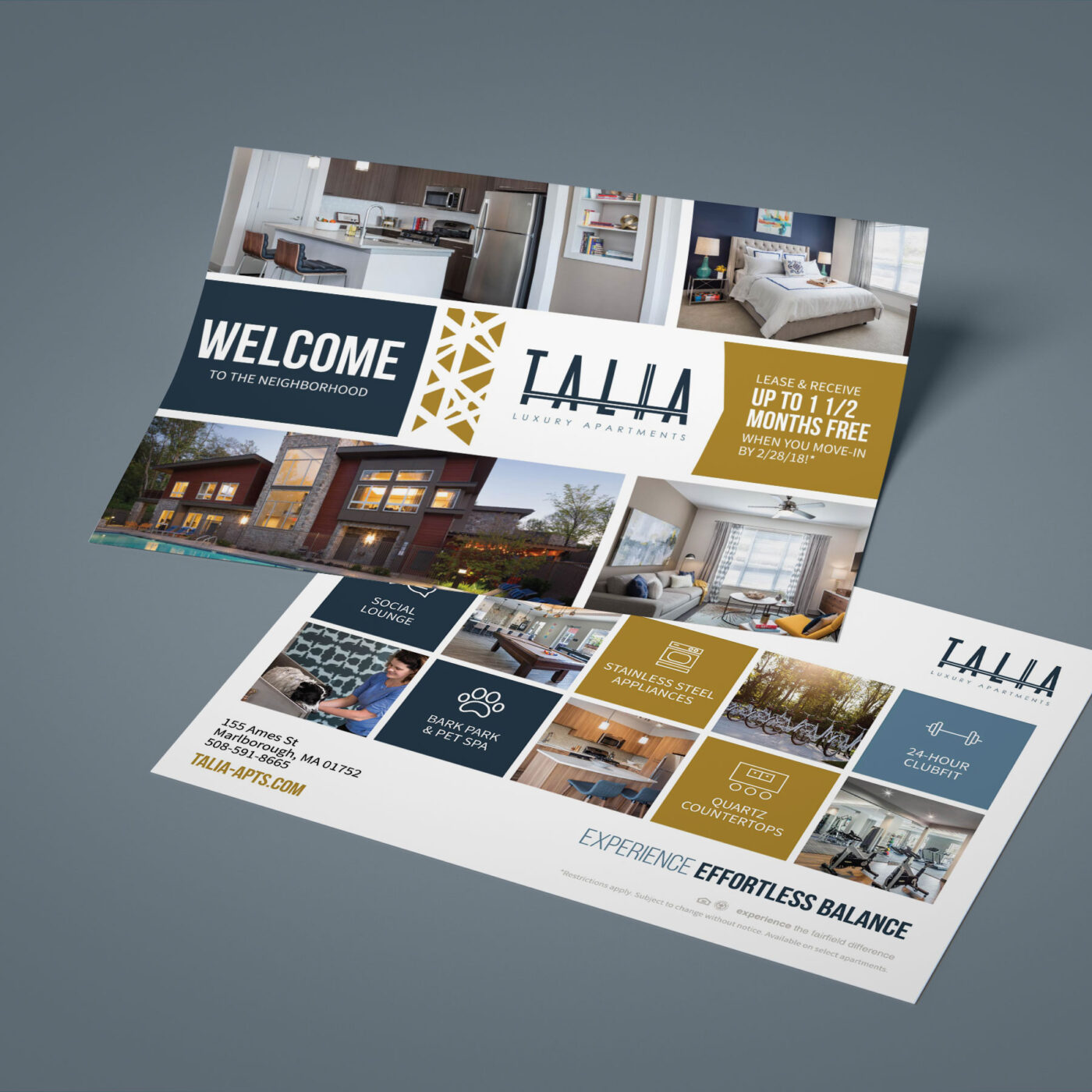 marketing collateral postcard or mailer